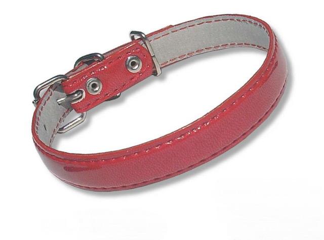 1-31-32-33 Ошейник красный лак с украшением для мелких и средних собак