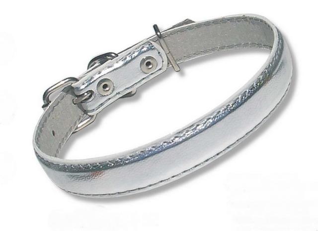24-26-52 Ошейник-серебро для мелких и средних собак