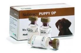Нобивак паппи вакцина для щенков